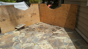 Santa Cruz Stump Removal Koala Tree Care