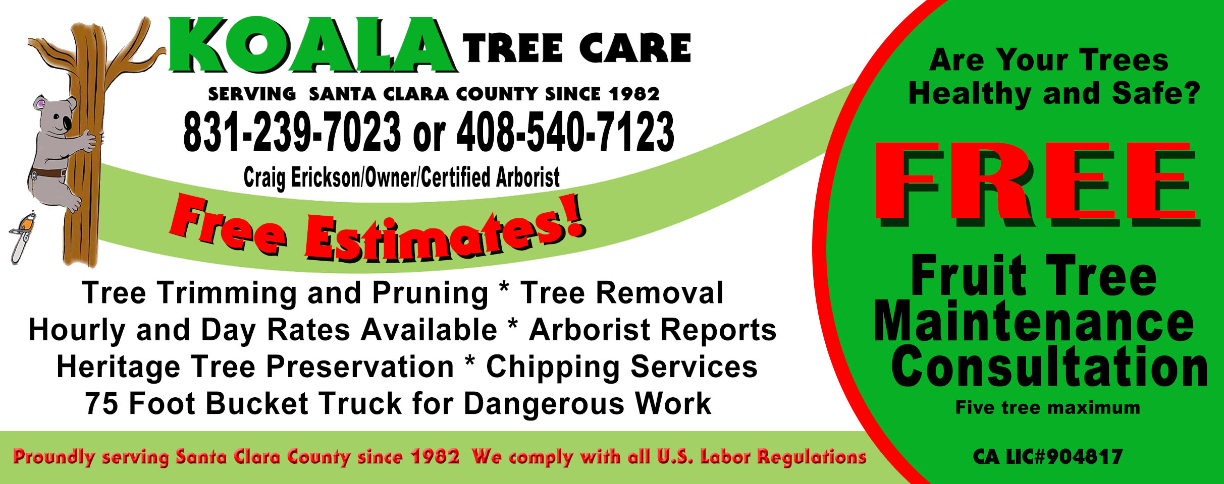Tree Services Monthly Specials Koala