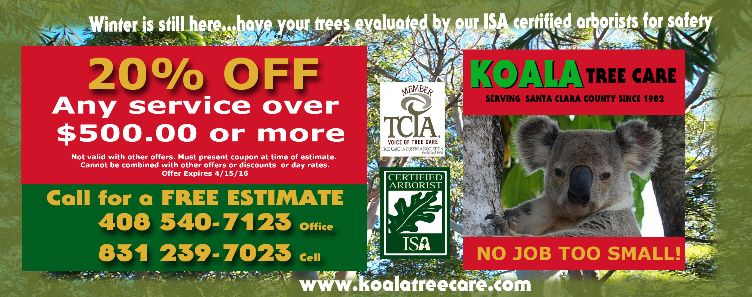 Tree Services Monthly Specials